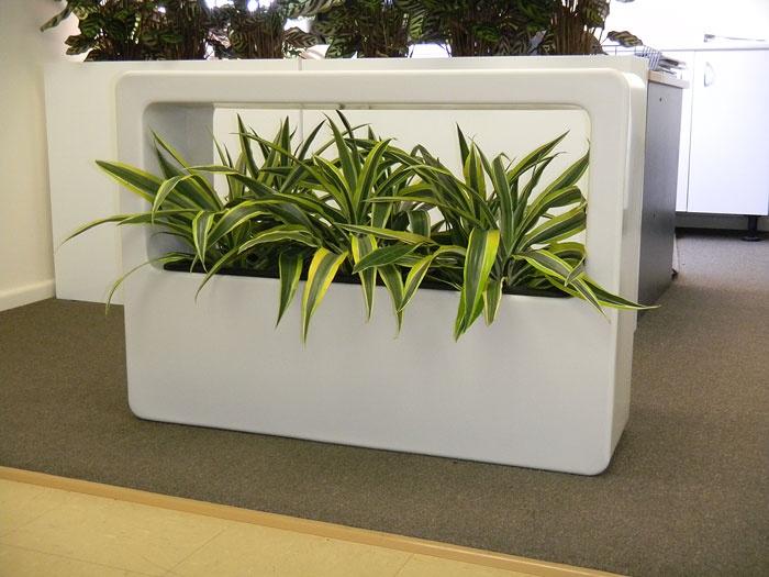30 besten desktop planters bilder auf pinterest b ropflanzen b ro ideen und b ros. Black Bedroom Furniture Sets. Home Design Ideas