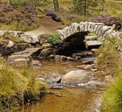 Parc Naturel Régional de Millevaches en Limousin©J.Damase