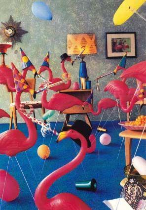 Flamingo party.....lol