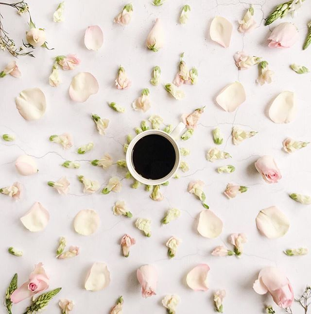 Happy Easter Monday! Its very damp and grey here so here are some rose petals to summon back the spring and some black coffee for shaking off the post-chocolate lethargy. . #bloomandwild #flowerstoyourdoorstep . #fouriadorefriday #tv_living #loveliest4 #global_ladies #momentsofmine #mywhitetable #stylingtheseasons #alittlebeautyeveryday #byarrangement #embracingtheseasons #quietchaotics #inspiredbypetals #petalsandprops #botanicalpickmeup #nestandflourish #simplethingsmadebeautiful…