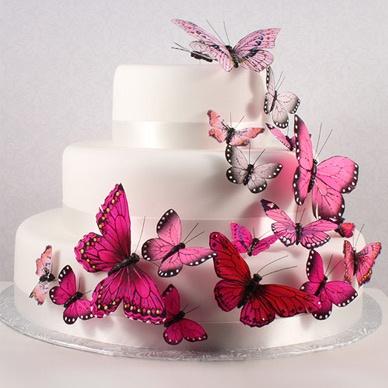 pink butterfly cake decoration kit - Cake Decor