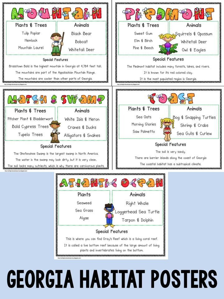 English Language Arts Standards » Reading: Literature » Grade 5