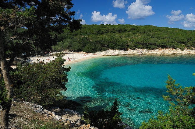 Emblisi Beach, a picture postcard Kefalonian beach. After Focki Bay, Emblisi is the next closest beach to Fiscardo. Not quite such an easy walk as it consists of a fair uphill trek on both legs of the journey #travel #greece #kefalonia