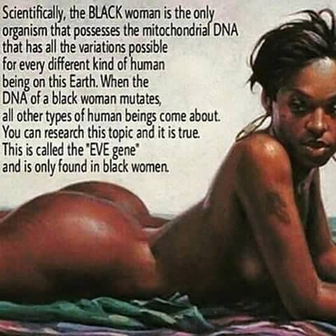 The eve gene!!! | Need to know history | Pinterest | Black history, History and Black women