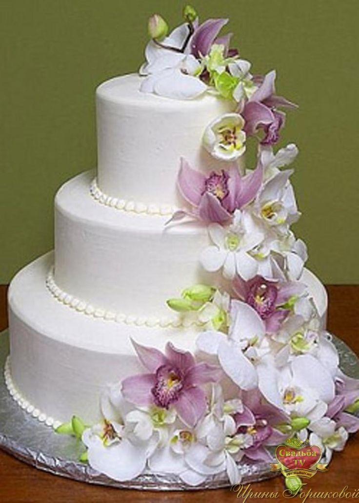 красивые торты рецепты с фото   Фотоархив