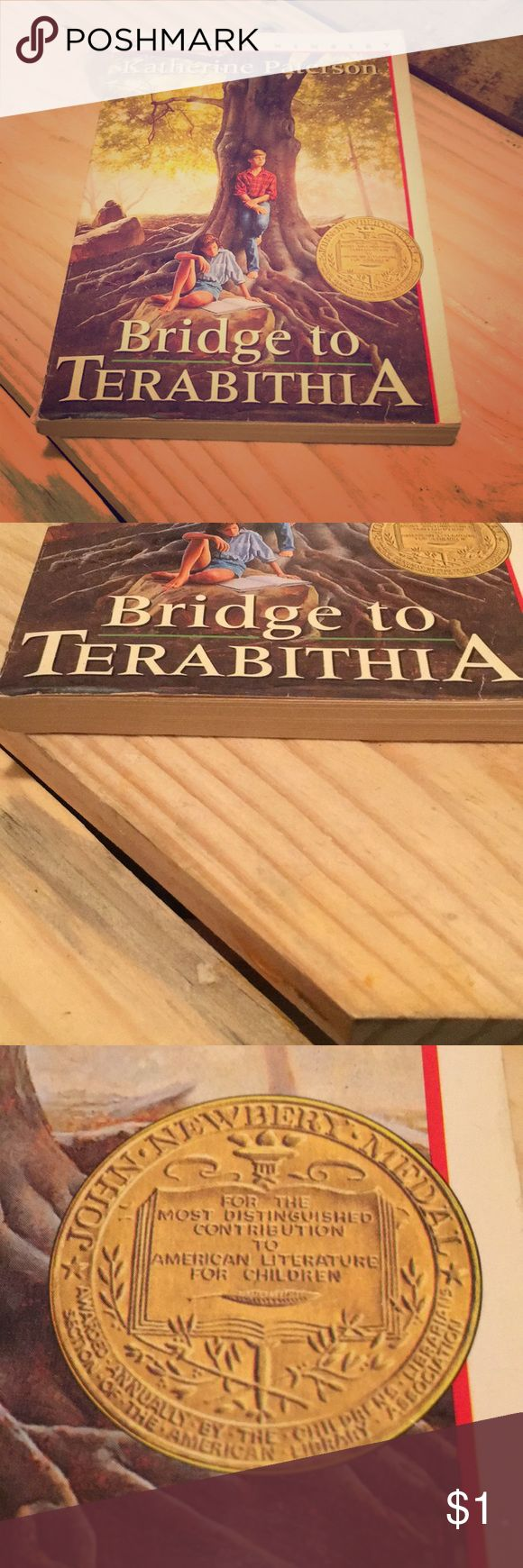 It is a old book. Had some wear but still good. Old book but still in good condition. Newberry medal award. Called Bridge to Terabithia. Author Katherine Paterson. 📚 Other