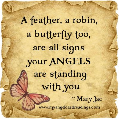 A feather, a robin, a butterfly too. are all signs your Angels are standing with you.