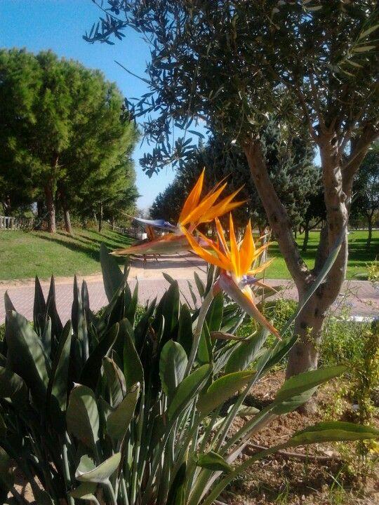 """Parc de """"La Canaleta"""" en Mislata, Valencia"""