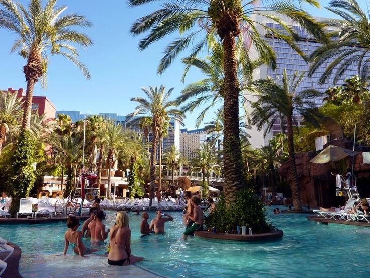 Flamingo's Casino Hotel Swimming Pool