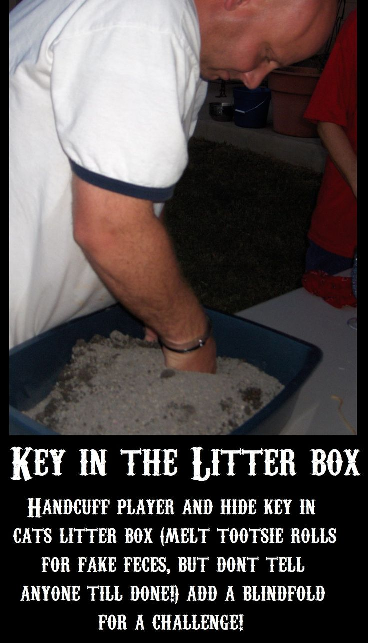 family fear factor - key in the little box  by LSS                                                                                                                                                                                 More