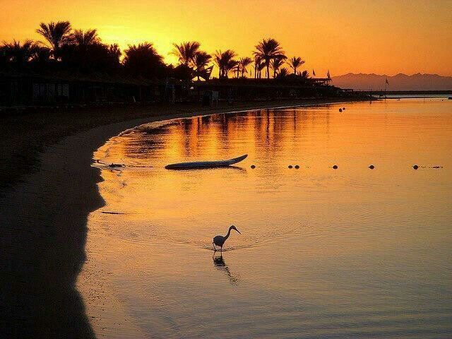 Dahab in the evening