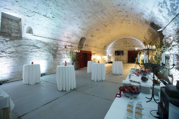 Unusual place for party - the castle cellar in Nelahozeves