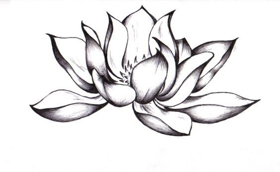 Black Lotus Tattoo | amazing lotus flower tattoo pictures, amazing lotus flower…