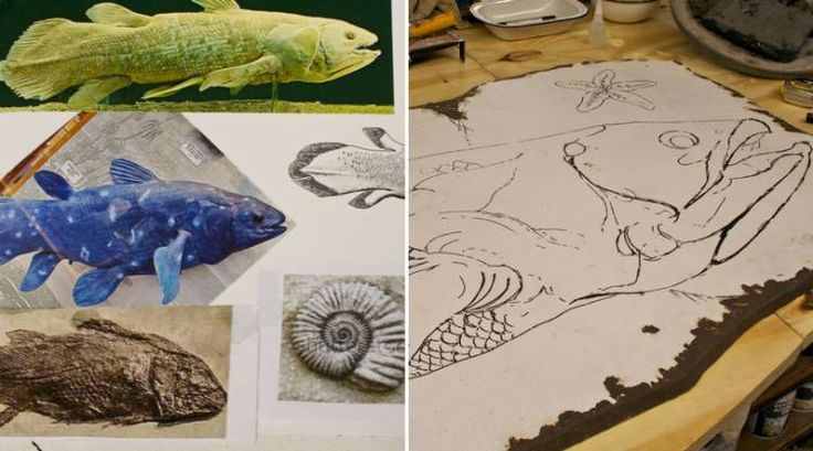 The making of a coelacanth – Blog – Two Oceans Aquarium Cape Town, South Africa | Exhibits | Conservation | Education | Events | Diving
