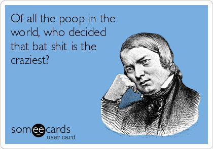 Of all the poop in the world, who decided that bat shit is the craziest?:
