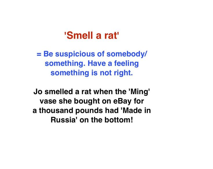 @english_idioms #LearnEnglish #english #Idiom #inglés  TO SMELL A RAT means to be suspicious of somebody or something