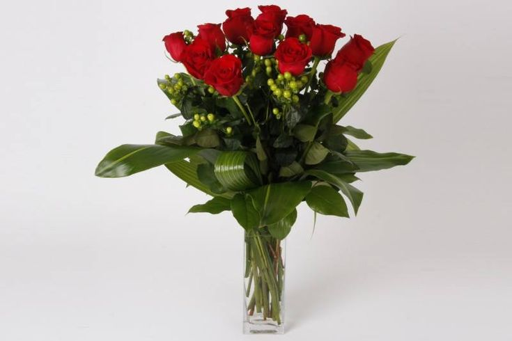 Dozen of red roses with green hypericum berries with aspidistra, salal and coco palm leaves in a clean clear rectangular glass vase