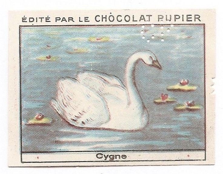 Le Cygne - - Oiseau Animal - Image Chocolat Pupier (1938/39)