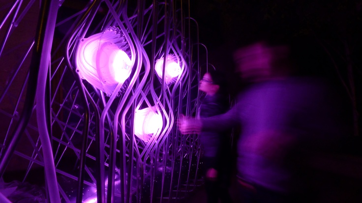 Datagrove / Zero1 by Future Cities Lab (Jason Kelly Johnson + Nataly Gattegno)
