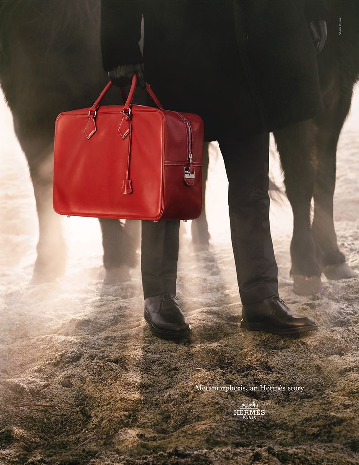 "Metamorphosis, an Hermes Story. ""Plume"" bag in Box calfskin.  Hermès 2014 autumn-winter campaign. #hermes #fashion"