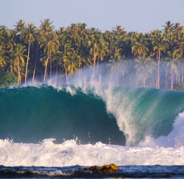 Shore break, palm trees, barrel, whitewash, surfer, surf, waves, ocean, sea, water, swell, surf culture, island, beach, salt life, #surfing #surf #waves