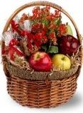 Health Nut Basket $42.99