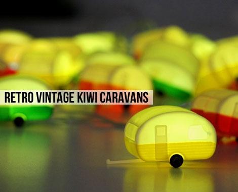 Unique Iconic Kiwiana LED Decorative Light