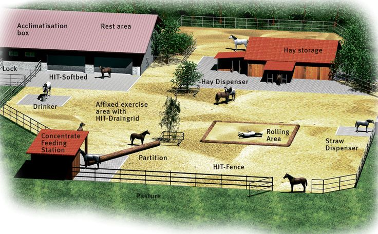 Durastall Stables Stable Panels And Accessories also Shedblog further Index together with Clipart Farm Background 3 additionally Porches And Balconies. on stable barn