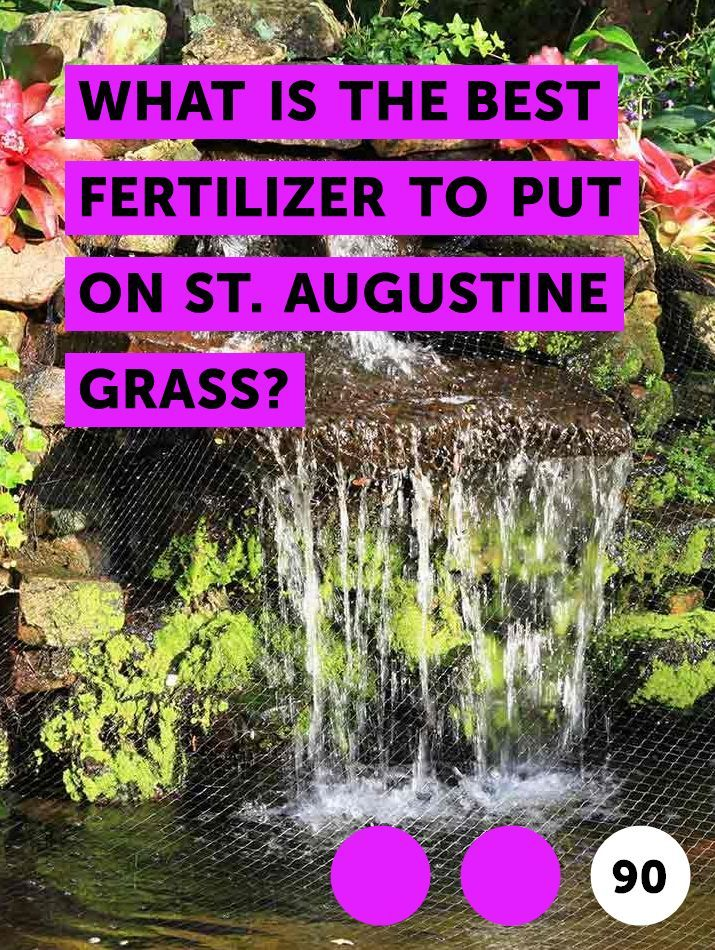What Is the Best Fertilizer to Put on St  Augustine Grass?  Lawns of