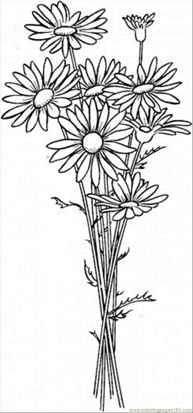 Flower garden coloring pages printable - Daisy Flower Coloring Pages Free Printable Coloring Page Daisy 6 Natural World Flowers