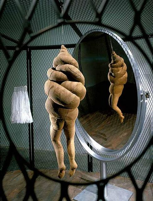 Louise Bourgeois, Cell XXVI, 2003. Looks like a piece of crap to me?