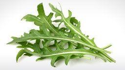Rucola-Blätter