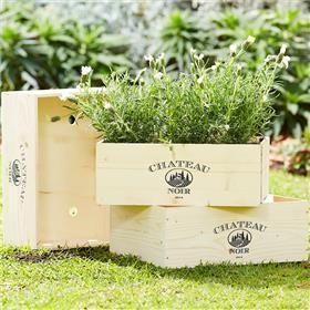 Garden & Outdoor   Kmart
