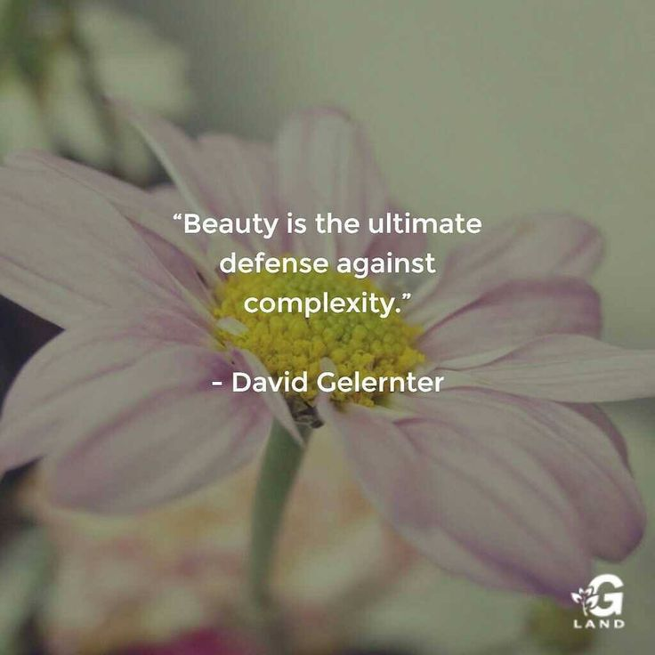 "Beauty is the ultimate defense against complexity."" #quote #quotes"