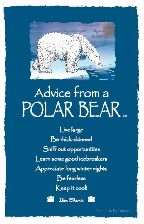 Advice from a Polar Bear.