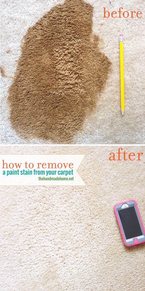 How to remove paint from carpet. Pinning this just in case I need reference one day