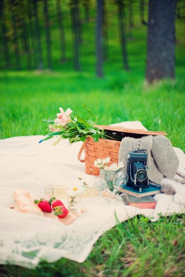 picnic set up picnic basket, flowers, drinks, desserts!