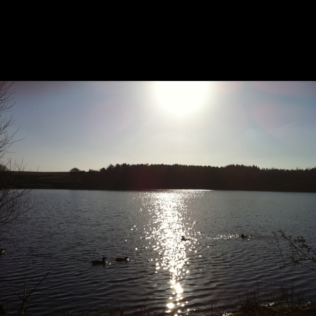 Sun shining over Ogden Reservoir