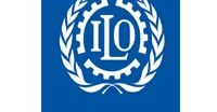 INTERNATIONAL LABOUR ORGANIZATION  VACANCY ANNOUNCEMENT  NATIONAL PROGRAMME COORDINATOR - ECONOMIC GROWTH AND EMPLOYMENT  The ILO Country office Dar es Salaam currently seeks to recruit a motivated and experienced National Programme Coordinator - Economic Growth and Employment with a demonstrated and proved track record.  Main Duties and Responsibilities i. Monitor employment and decent work trends in Tanzania on a continuous basis especially on the role of enterprise development; ii. Assess…