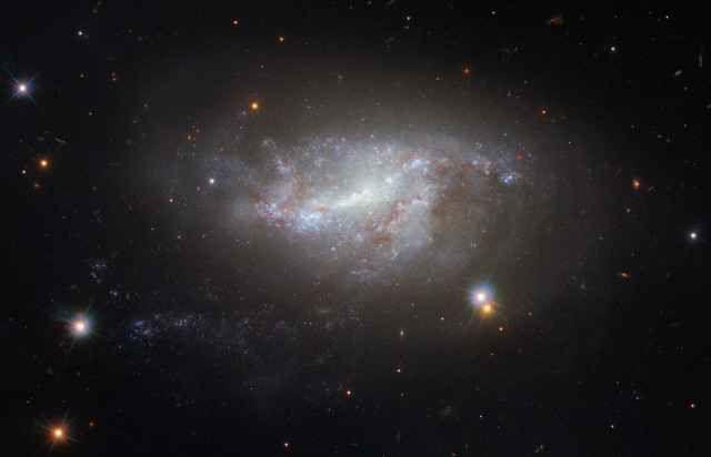 NGC 5917 è una galassia interagente ritratta da sola dal telescopio spaziale Hubble In un'immagine catturata dal telescopio spaziale Hubble della galassia NGC 5917 appena pubblicata essa appare da sola anche se si tratta di una galassia interagente influenzata da una vicina. #hubble #galassie #supernove