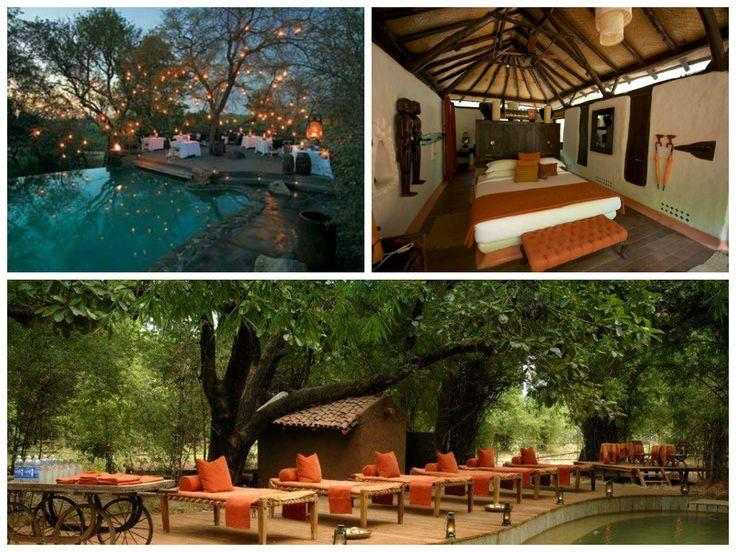 Mahua Kothi Safari Lodge, #Bandhavgargh