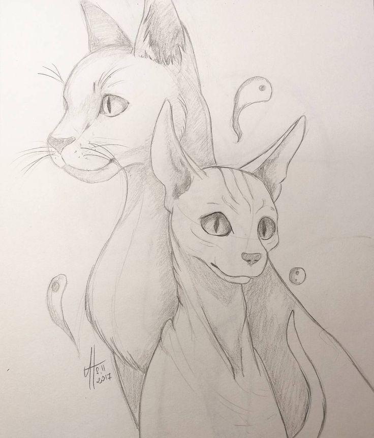#sketchbook #sketch #cats #pencil #drawing
