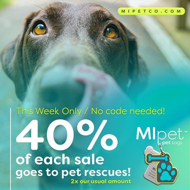 Dont Forget About This Weeks Special Offer When You Buy A Mipet