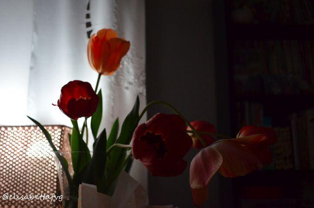 Eccoci ad Aprile! Finalmente apro le finestre tutto il giorno! Aria, aria fresca, il sole scalda queste giornate sempre più lunghe e luminose! Si nota il cambio dell'ora, vero? Ci si alza anc…