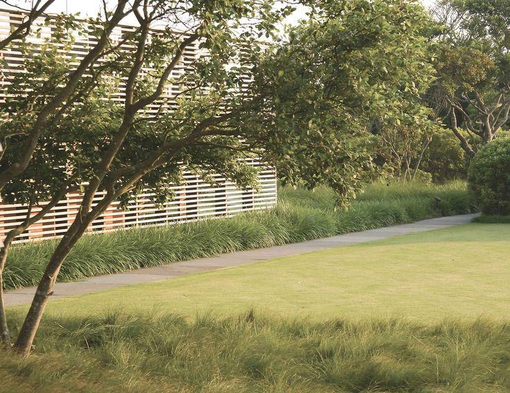Sagaponack Res ~ Laquardia Design Landscape Architects