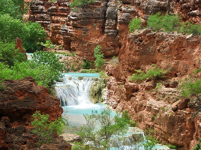 Upper Beaver Falls from trail - Grand Canyon    We stopped at Havasu Creek (RM 156.5) and hiked to Upper Beaver Falls and Beaver Falls. We stopped before entering the Havasupai Reservation since they charge a hefty fee. It is an amazing shade of aquamarine blue.