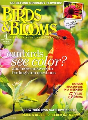 Birds and Bloom Magazine: Books Magazines, Favorite Magazines, Backyards Friends, Bloom Magazines, Backyards Birds, Birds House, Gardens, Birds 2014, Feathers Friends