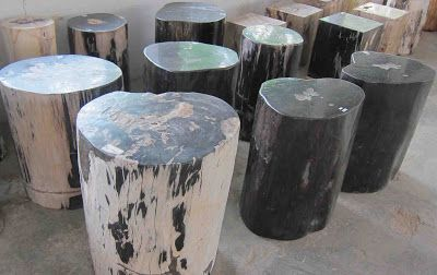 Rustic Outdoor Furniture, Rustic Decor, Petrified wood, Fossil wood, Rustic