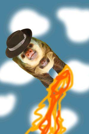 Funny Sloths Animals Giff #9011 - Funny Sloth Giffs| Funny Giffs| Sloth Giffs