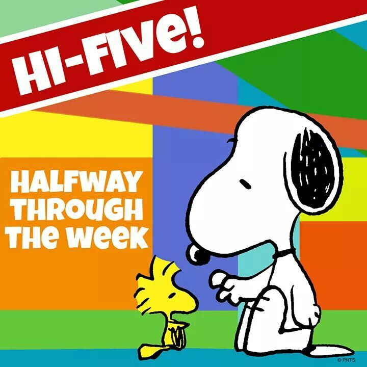 Good Morning Snoopy Wednesday : Best images about wednesday on pinterest happy